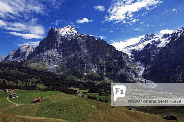Große Scheidegg  Wetterhorn  Grindelwald  Berner Oberland  Schweiz