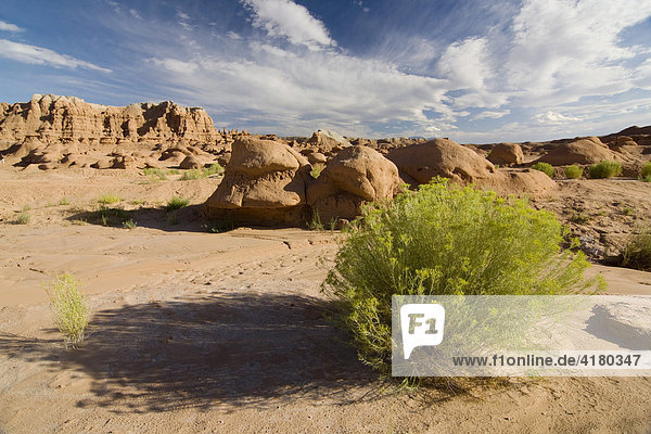 Sandsteinformationen im Goblin Valley State Park  Utah  Vereinigte Staaten von Amerika