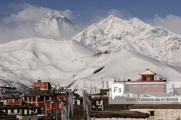 Pilgerort Muktinath und der Berg Dhaulagiri  der siebthöchste Berg der Welt in Nepal  Asien