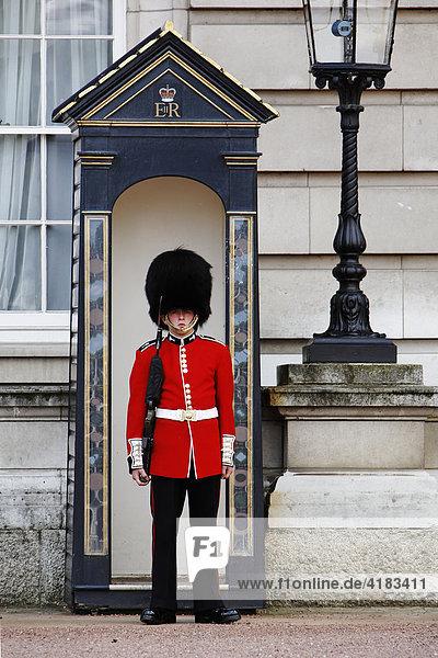 Wache vor dem Buckingham Palast in London  England