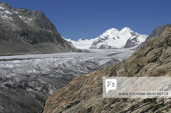 Grosser Aletschgletscher  Goms  Wallis  Schweiz
