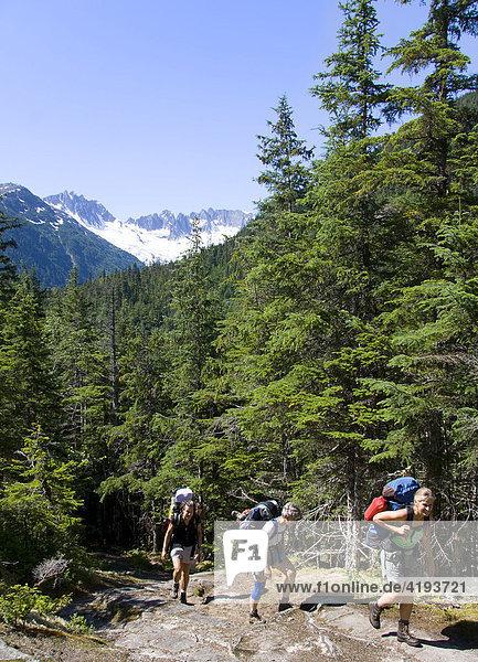 Wanderer erklimmen einen Hügel auf dem Chilkoot Trail  Frauen  Irene Glacier (hinten)  Chilkoot Trail  Alaska  USA