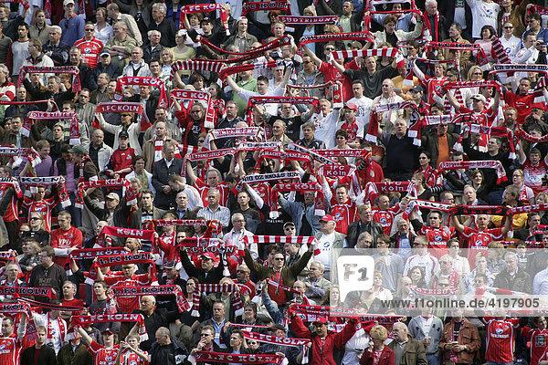 Fans des 1.FC Köln im Rheinenergie-Stadion. Köln  Nordrhein-Westfalen  Deutschland Fans des 1.FC Köln im Rheinenergie-Stadion. Köln, Nordrhein-Westfalen, Deutschland