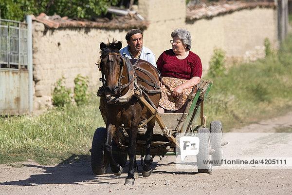 Bauern mit Pferdefuhrwerk  Bulgarien  Europa