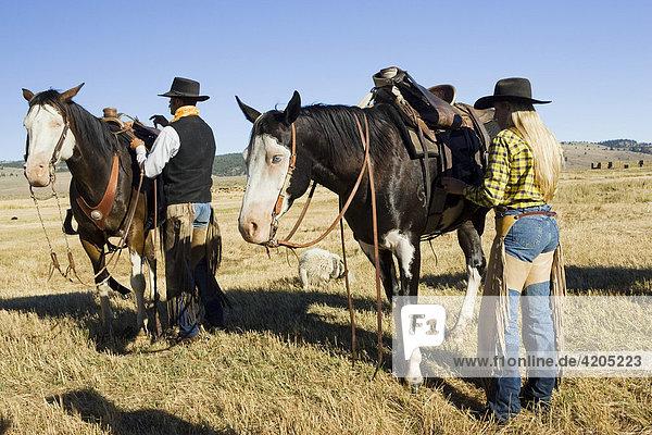 Cowgirl und Cowboy satteln ihre Pferde  Oregon  USA