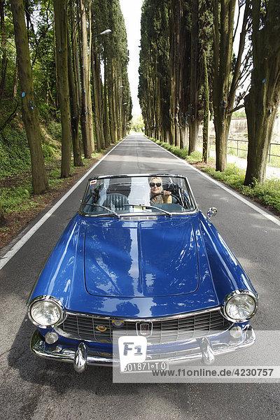 Seniorin fährt mit Cabrio auf einer Allee  Italien  Padenghe sul Garda