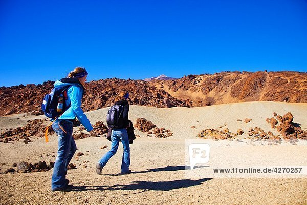 Teide National Park. Tenerife. Canary Islands. Spain.