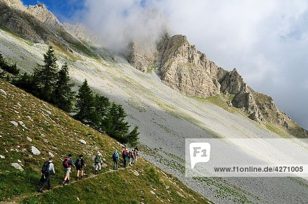 Hiking  Trekking group on a alpine trail in Mercantour National Park  Haute Verdon mountains  Alpes de Haute Provence  France  Europe