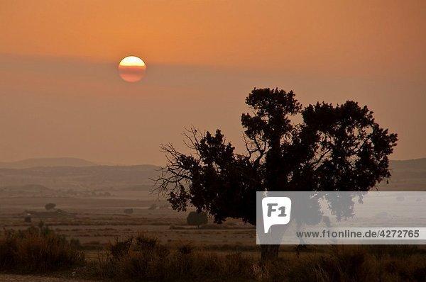 Monegros landscape  Aragon  Spain