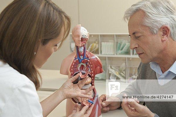 Ärztin und Patient unterhalten sich an einem Anatomiemodell