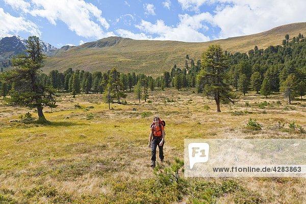 Frau im Hochmoor  Radurschltal  Ötztaler Berge  Österreich  Europa