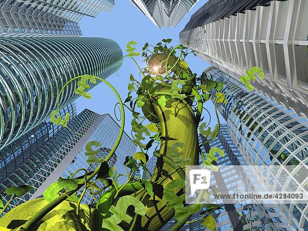 Kletterpflanze mit Pfundzeichen wächst neben Wolkenkratzern