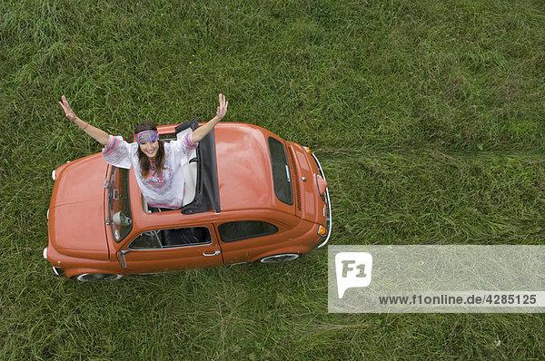 Hippy Hündin aus dem Auto streckend