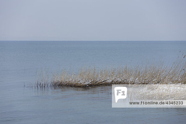 Winterliche Seenlandschaft