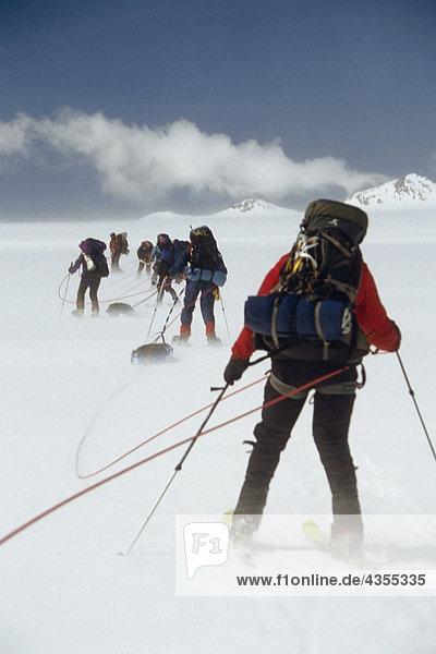Bergsteiger auf Skiern in eine Überquerung Crean Gletscher Südgeorgien ist Antarctic Blizzardes