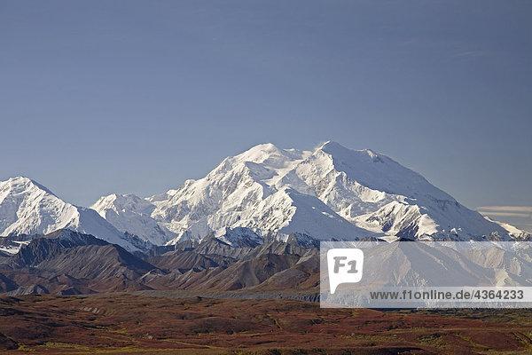Ansicht der Mt.McKinley an einem klaren Tag vom Eielson Besucherzentrum mit Herbstfarben rund um den Schnee bedeckt Berge  Denali National Park  Alaska Interior  Herbst/n Ansicht der Mt.McKinley an einem klaren Tag vom Eielson Besucherzentrum mit Herbstfarben rund um den Schnee bedeckt Berge, Denali National Park, Alaska Interior, Herbst/n