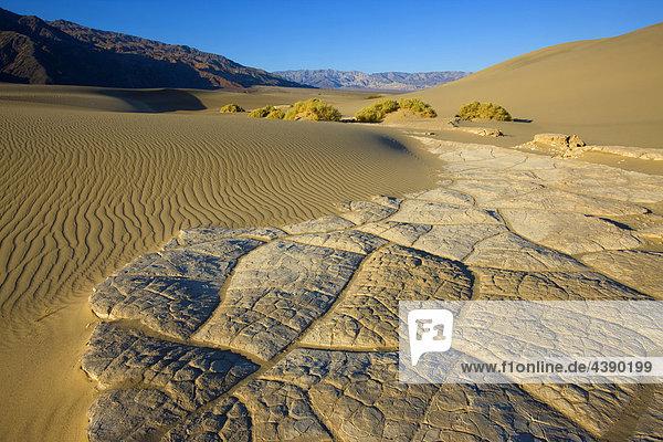 Mesquite sand Dunes  USA  America  United States  California  Death Valley  national park  dunes  sand  sand dunes  shrubs  bushes  rocks  cliffs