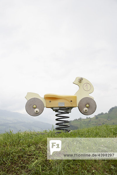 playground toy on meadow in Swiss mountains