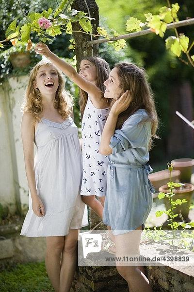Drei Mädchen im grünen Garten
