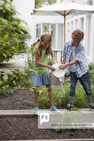 Junge und Mädchen gießen Pflanzen