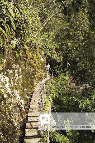 Neuseeland  Südinsel  Frau beim Wandern auf dem Alex Knob Trail