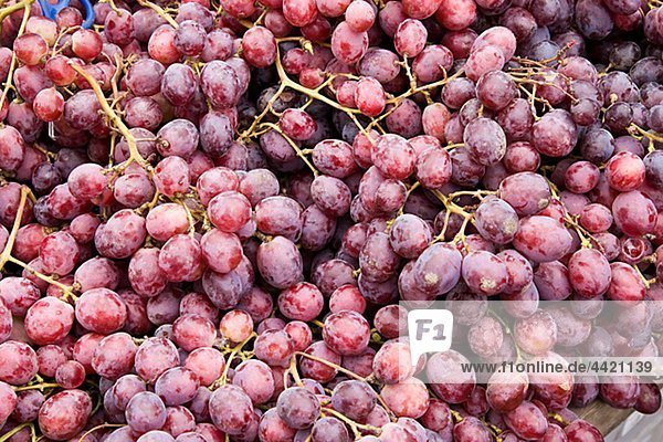 Fresh bunches of red grape  close-up