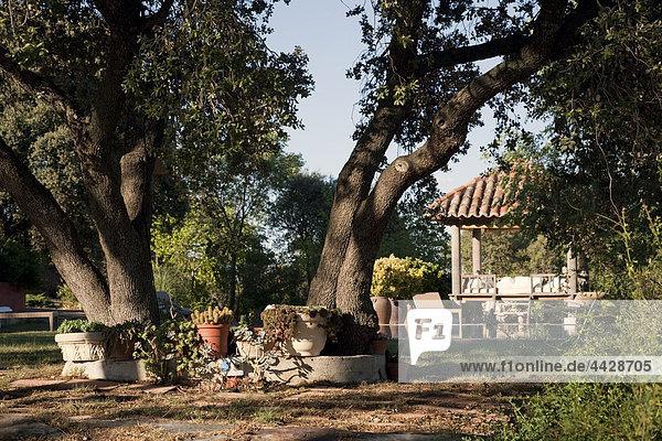 ruhen Wohnhaus Baum Ländliches Motiv ländliche Motive Garten antik Rest Überrest