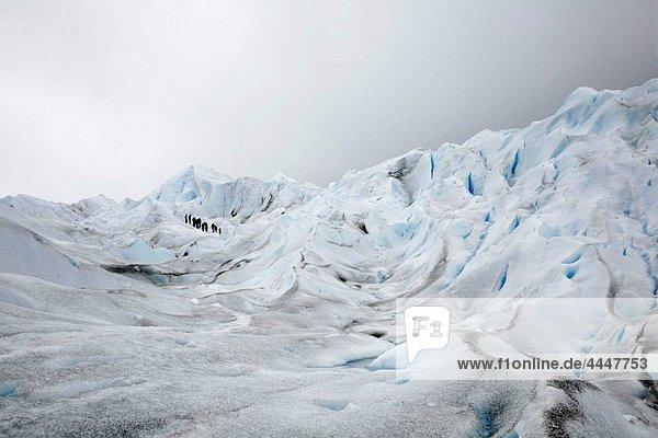 People trekking on Perito Moreno glacier Los Glaciares National Park  El Calafate area  Santa Cruz province Patagonia Argentina