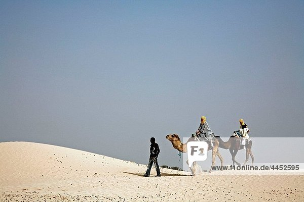 Beduins leading tourists on camels at the sahara desert. Douz  Tunisia.