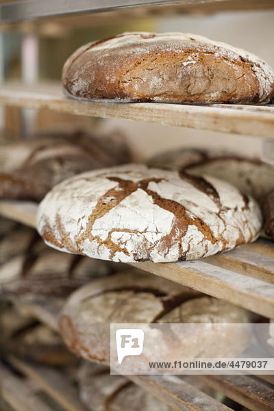 Gestelle mit frisch gebackenem Brot