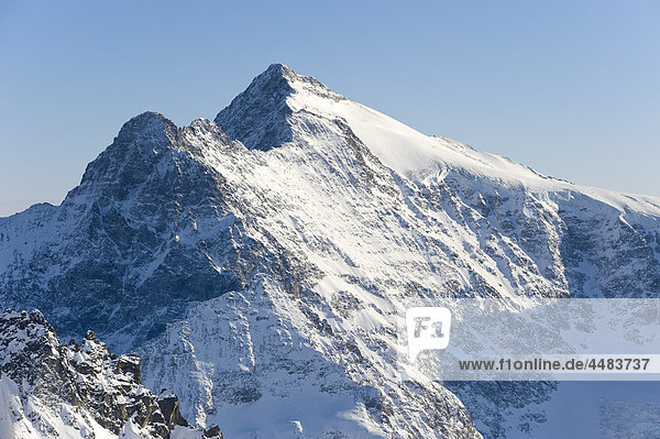 Sustenhorn  Urner Alpen  Westalpen  Schweiz  Europa Sustenhorn, Urner Alpen, Westalpen, Schweiz, Europa