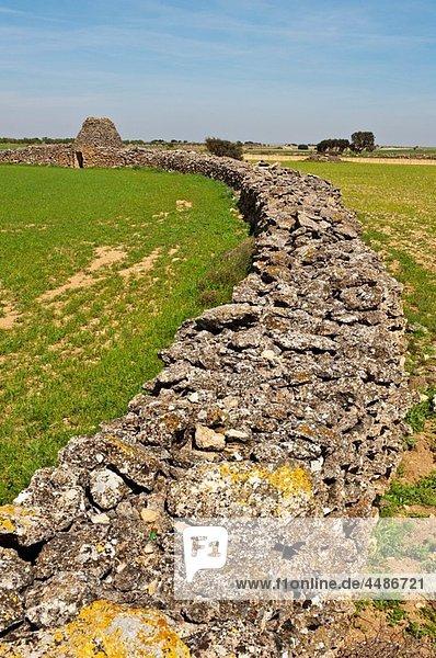 La Mancha landscape with typical stone hut  Minaya  Albacete province  Castilla-La Mancha  Spain