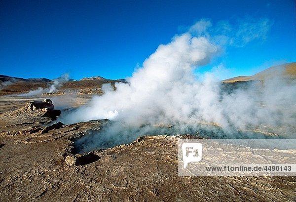 Geysers El Tatio  Atacama Desert  Region of Antofagasta North of Chile