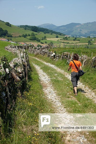 On the way to Xorroxin waterfall  Iñarbil Quarter  Errazu Erratzu  Navarra Nafarroa  Spain