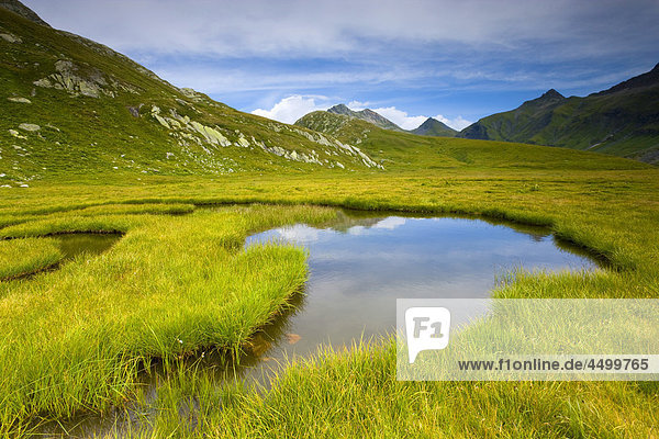 Nationalpark Planung Landschaft Spiegelung Bach Surselva Sumpf Hochebene Kanton Graubünden Schweiz