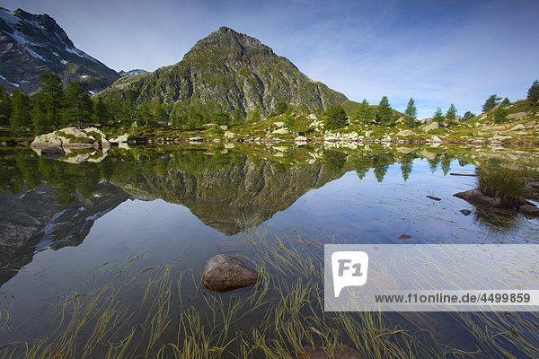 Massersee  Switzerland  canton Valais  nature reserve  valley of Binn  lake  mountain lake  reflection  water plants
