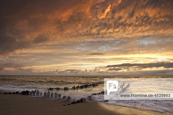 Sonnenuntergang  Sylt  Schleswig-Holstein  Deutschland  Europa