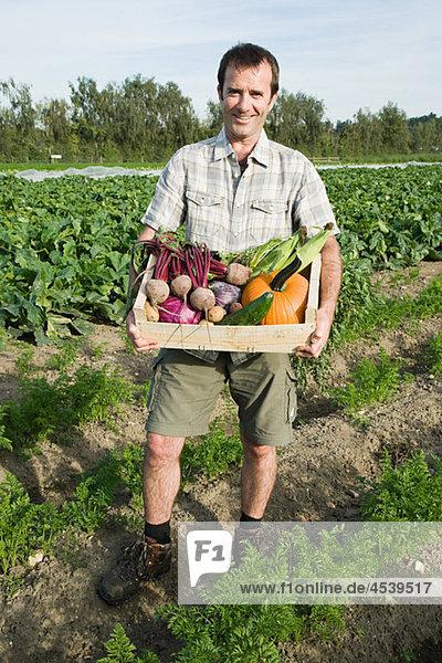 Mann mit Holzkreation aus frisch gezüchtetem Gemüse