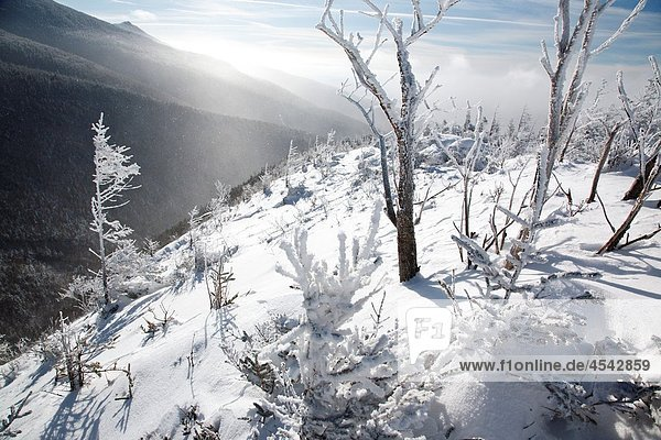 Strong winds blow snow across the valley along the Old Bridle Path during the winter months in the White Mountains,  New Hampshire USA