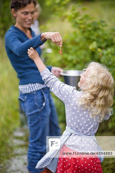 Mutter Mädchen Rote Johannisbeere einzuräumen