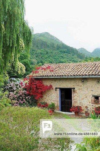 Rural house and landscape. Nueva  Asturias province  Spain.