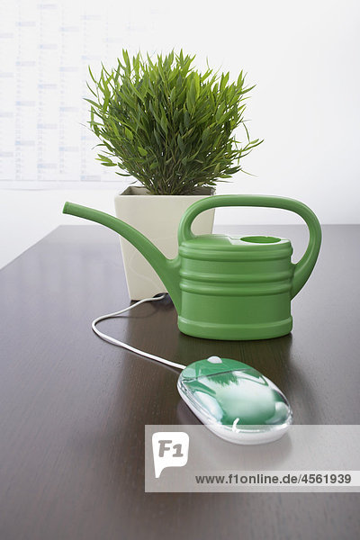 computer mouse watering can and potted plant on table