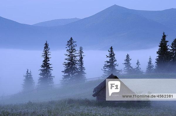 Nebel verlegen über Dzembronya Landschaft in der ukraine
