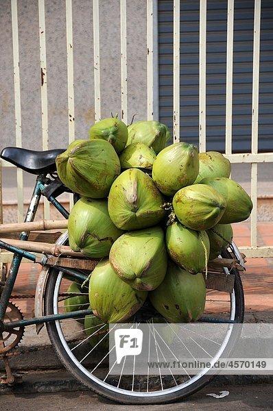 Coconuts on a bike rack