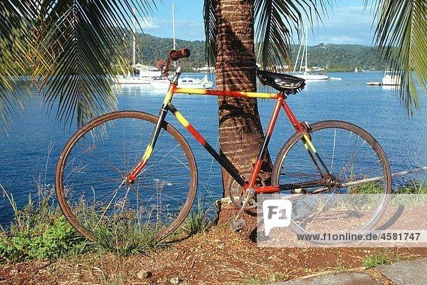 Brightly colored bicycle in Port Antonio  Jamaica