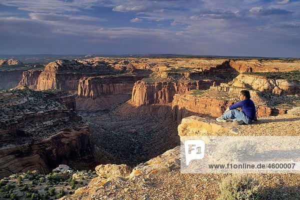Looking over Trail Canyon from atop Aztec Butte  Island in the Sky District  Canyonlands National Park  Utah  USA
