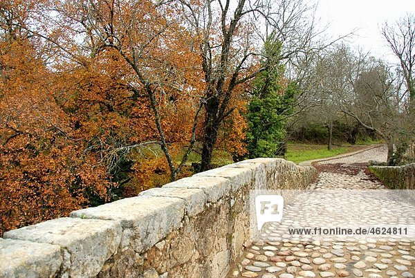 Fifteenth century bridge over the ìGarganta de Cuartosî  a gorge with fresh water coming from the Sierra de Gredos. Losar de La Vera  La Vera  Caceres  Extremadura  Spain  Europe.