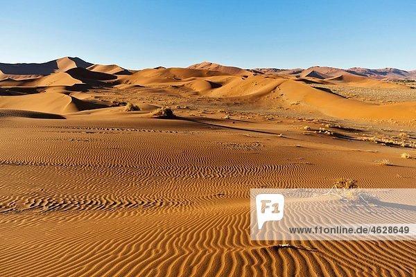 Afrika  Namibia  Namib Naukluft Nationalpark  Blick auf Sanddünen am Naravlei in der Namibwüste