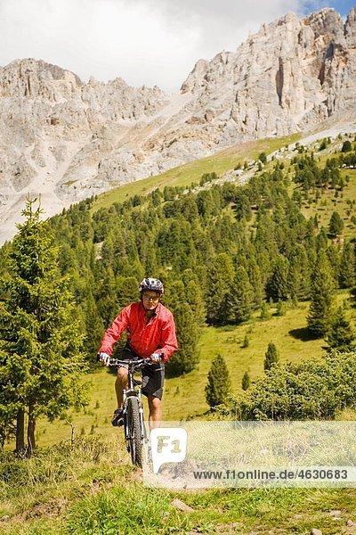 Italien  Dolomiten  Reife Männer beim Radfahren im Latemar-Gebirge