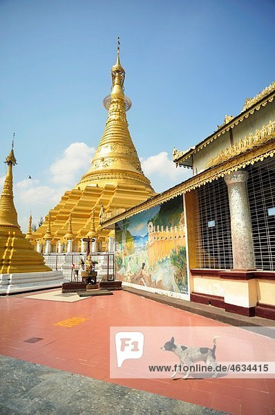 blass Myanmar